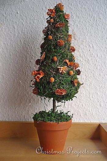 Christmas Tree Topiary - Christmas Projects
