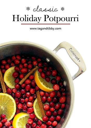 Classic Stovetop Potpourri - Tag and Tibby