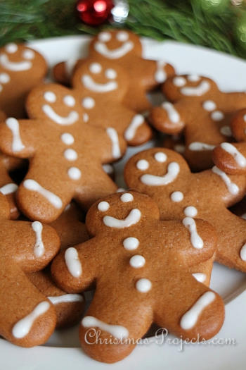 Lebkuchen - German Spice Cookies - Christmas Projects